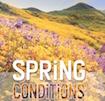Spring-Condition.jpeg